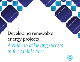 Developing renewable energy projects